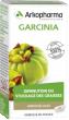 Arkopharma arkogélules garcinia 45 gélules